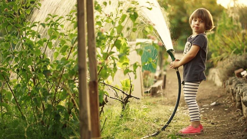 Happy toddler girl watering plants in green community garden.