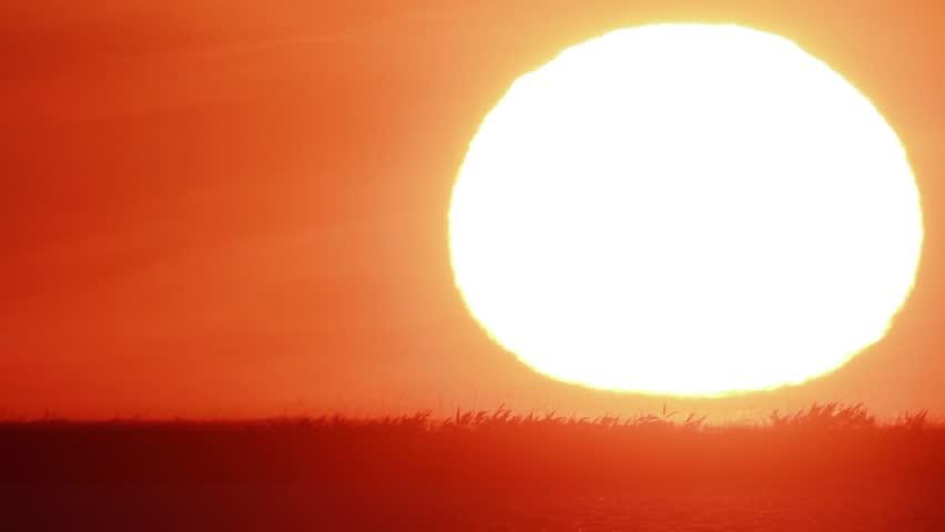 Beautiful Sunset  #5091989