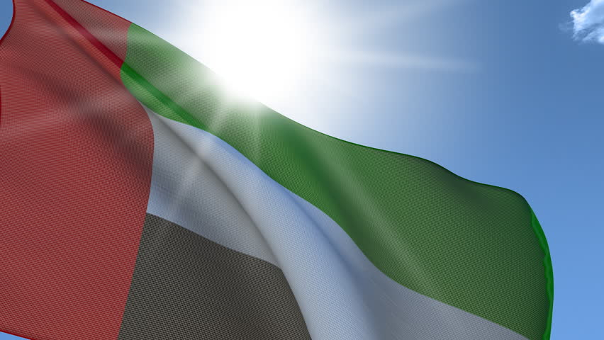 Flag of Arabs Emirates United waving on the wind. Loop. Fabric Details