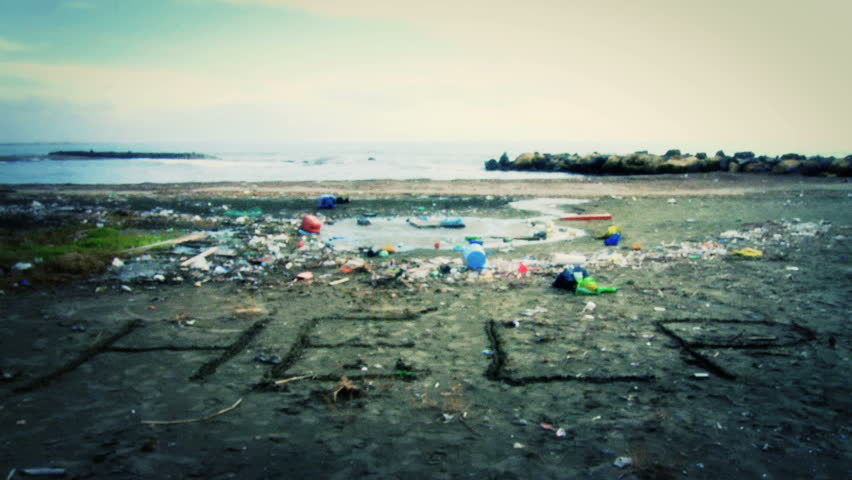 Horrible ecological disaster on beach/Nature is asking for help