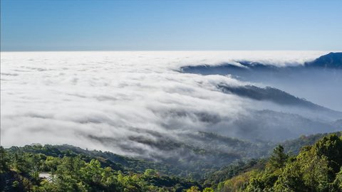 beautiful mist flowing on valley at doi inthanon national park of chiang mai, thailand (pan shot)