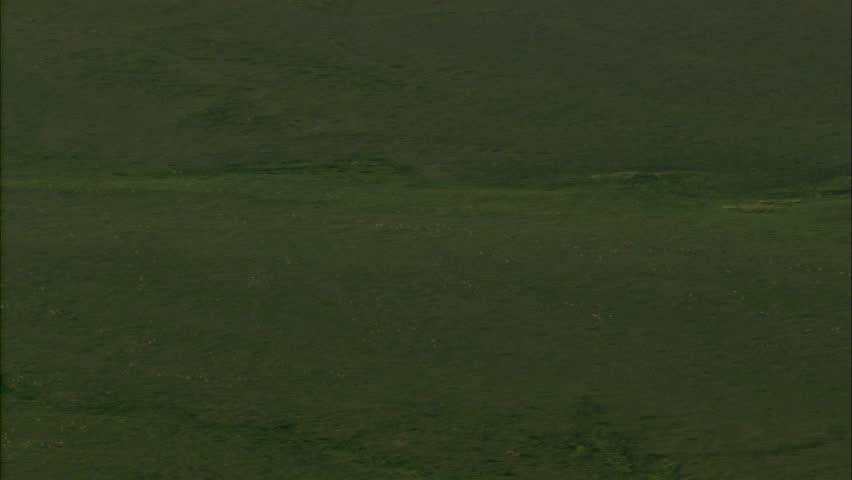 grasslands video