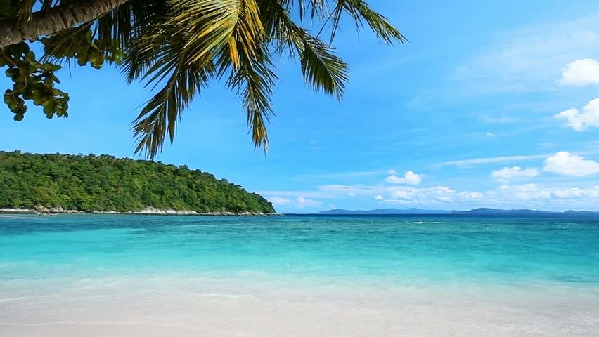 Peaceful tropical beach #5515157