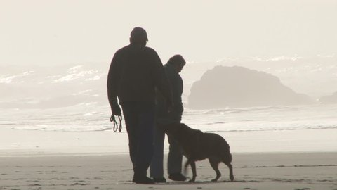 An older man and woman couple enjoy walking on sandy beach with their dog.