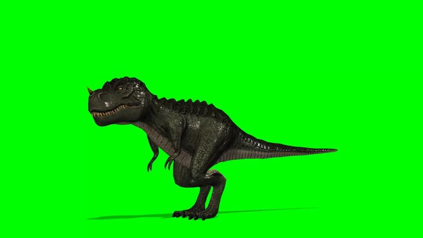 Dinosaur Tyrannosaurus T-Rex roars - green screen