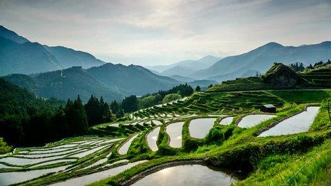 Rice Terraces at Maruyama-senmaida, Kumano, Mie, Japan.