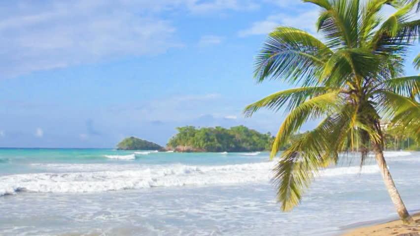 Natural caribbean beach | Shutterstock HD Video #6247499
