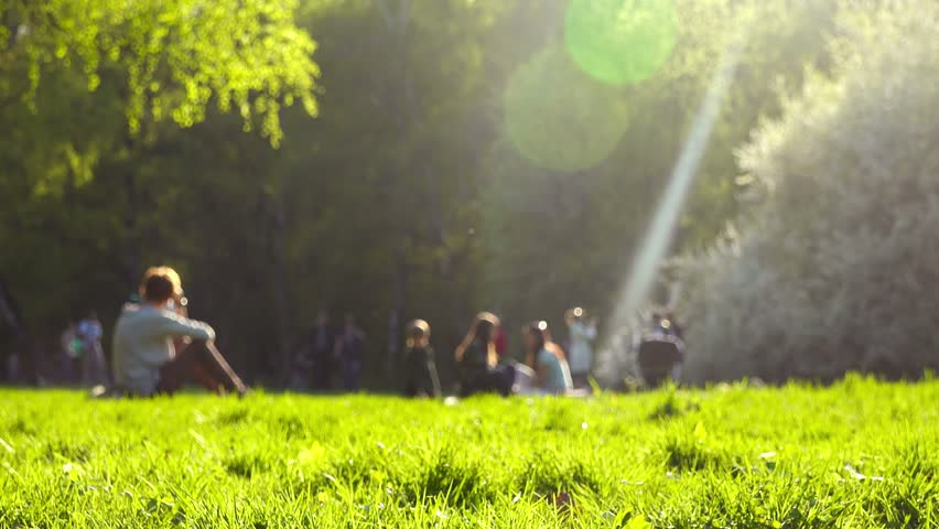 Summer day in a park. People walking, relaxing. Selective focus on foreground.