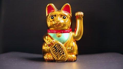 Lucky Asian Cat