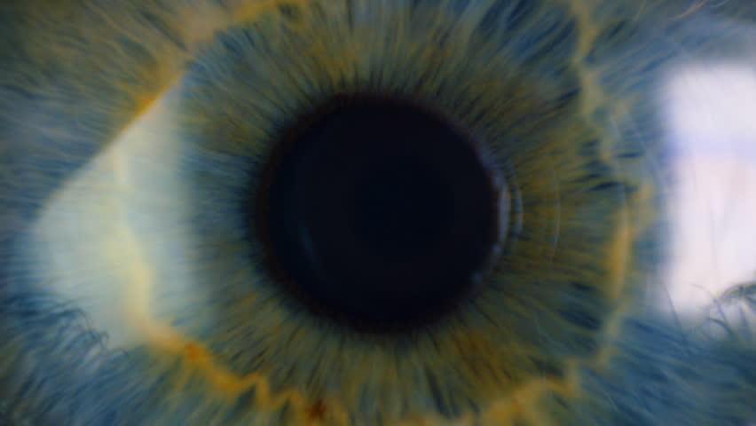 Pupil of the eye narrows #6604469
