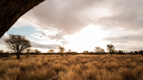 Linear pull-back abstract timelapse of a typical Savanna Bushveld landscape with Acacia trees and tall grass and an African sunset with beautiful scattered clouds.