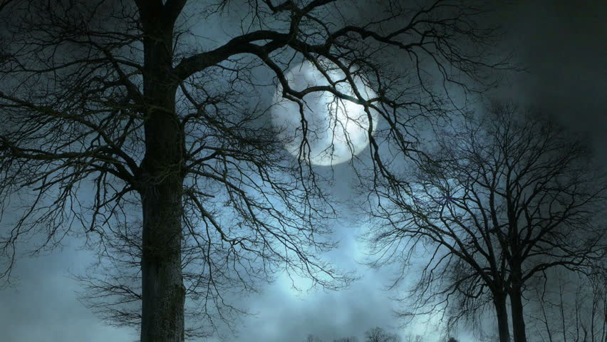 Time lapse of moon night sky spooky trees silhouette - Scary animated backgrounds ...