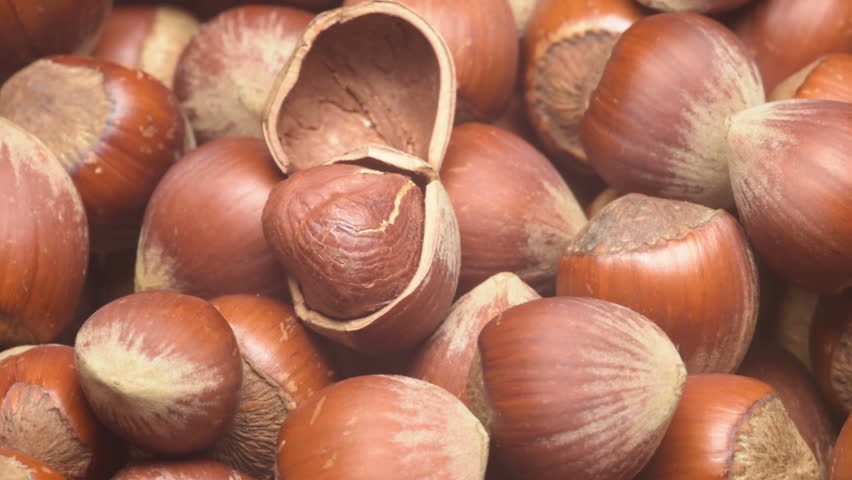 A pile of shelled hazelnuts rotating smoothly. Tripod used under studio lighting. - HD & A Pile Of Shelled Hazelnuts Rotating Smoothly. Tripod Used Under ... azcodes.com