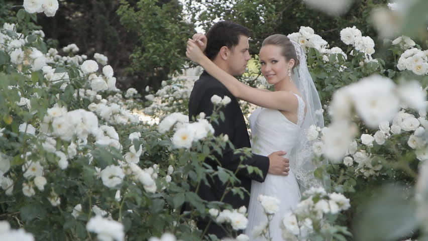 The groom kisses the bride gently standing among blooming white roses | Shutterstock HD Video #7653997