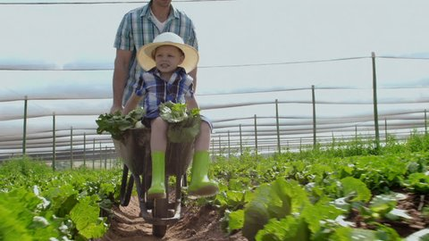 Farming Father Pushing Son In Stock Footage Video 100