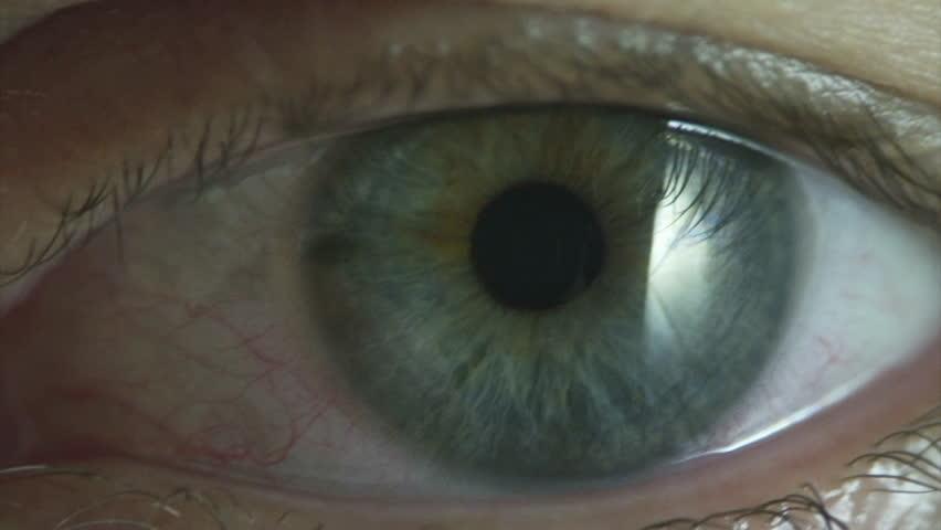 Eyes closeup. Clip 3. #8264749