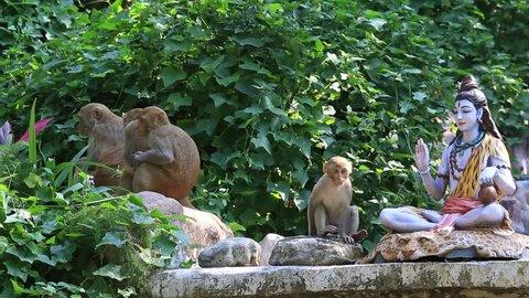Monkeys near the statue of Shiva in Rishikesh, India