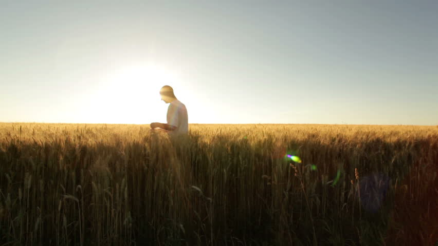 farmer in huge wheat field at sunshine