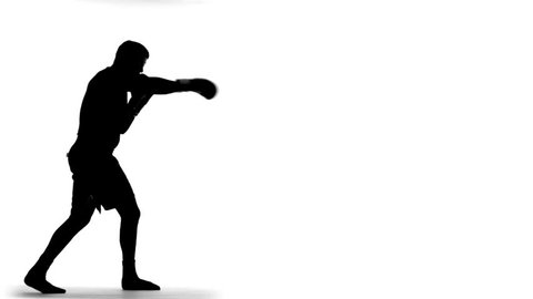 Boxing Silhouette (slow motion)