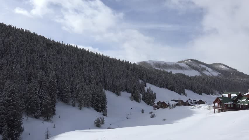 Snow Covered Mountain Forest/ A slow pan of the alpine forest covered in snow.