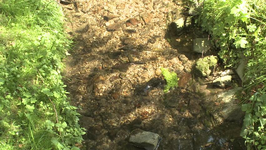Creek | Shutterstock HD Video #8879749