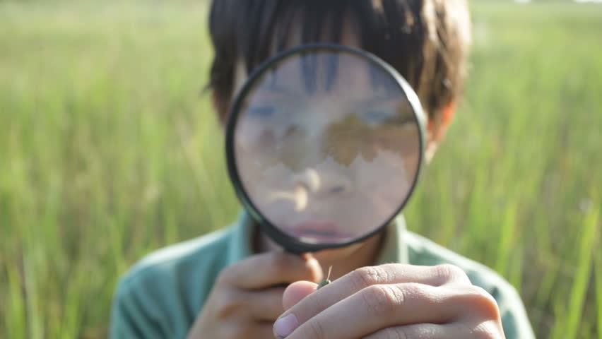 The boy with a magnifier