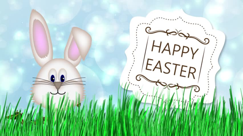 Happy Easter - Easter Bunny Video Animation  - HD stock footage clip