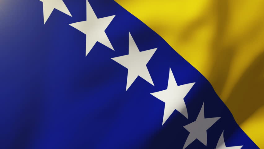 Image result for bosnia flag