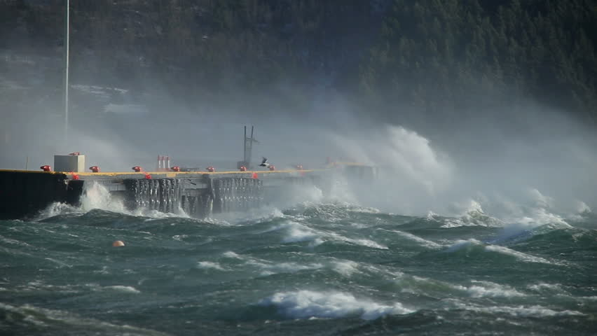 crashing waves on pier docks, sea spray, hurricane gale force wind storm, bird coasting in foreground, Akureyri, Iceland