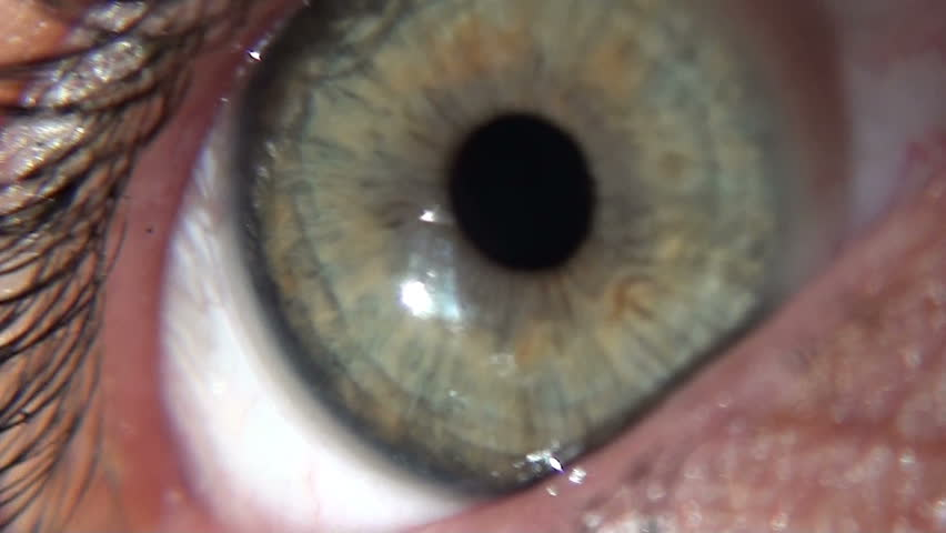 Super close up of green eye and dilating pupil