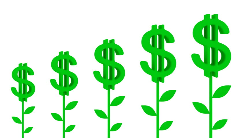 Dollar plants. Earnings growth concept.Isolated on white.